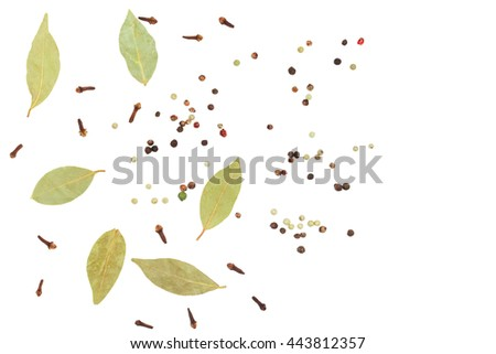 Clove, paprika and bay leaf on white background - stock photo