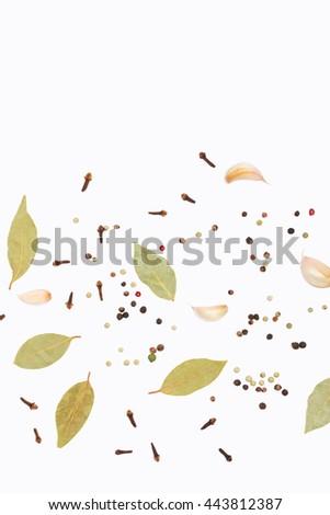 Clove, paprika, garlic and bay leaf on white background - stock photo