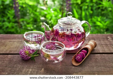 clover flower tea in the glass cups and teapot on a wooden table  - stock photo
