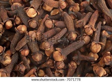 Cloves - stock photo