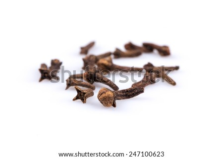 Cloves spice isolated on a white background - stock photo