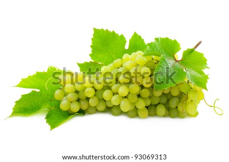 Cluster of ripe, green grapes. - stock photo
