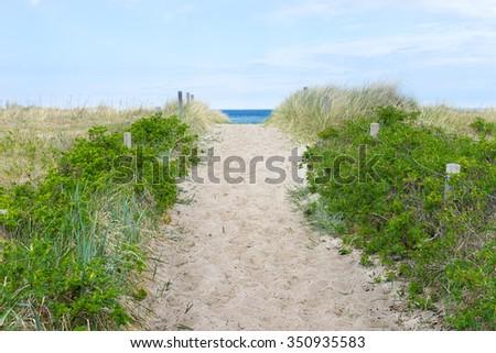Coast of the baltic sea - stock photo