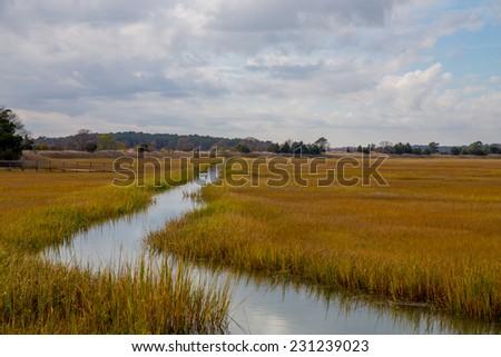 Coastal Atlantic marsh in Lewes, Delaware. - stock photo