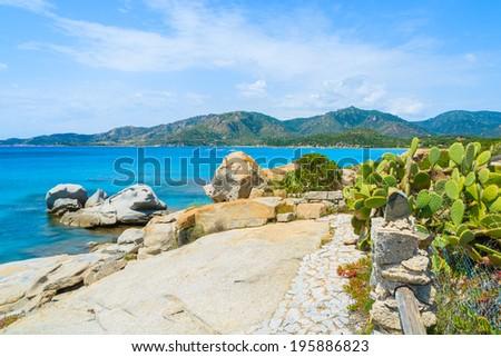 Coastal path along a sea with green cactus plants near Spiaggia del Riso beach, Sardinia island, Italy  - stock photo