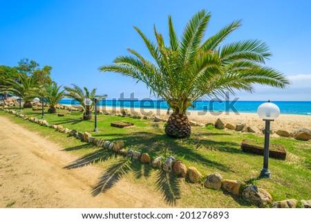 Coastal promenade with palm trees along a beach, Cala Sinzias, Sardinia island, Italy - stock photo