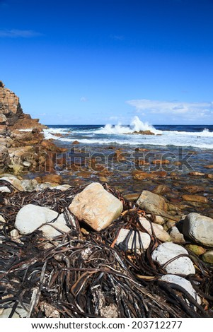 Coastline and high wave at Cape of Good Hope, Cape Town, South Africa - stock photo
