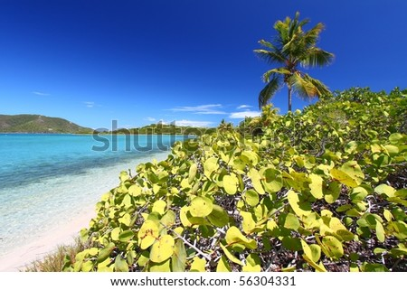 Coastline in British Virgin Islands. - stock photo