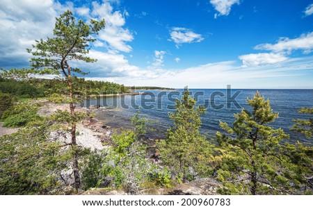 Coastline in Scandinavia trough some pine trees, Sweden - stock photo