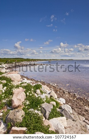 Coastline with stone and grass in a sunny day at Oland island in Sweden - stock photo