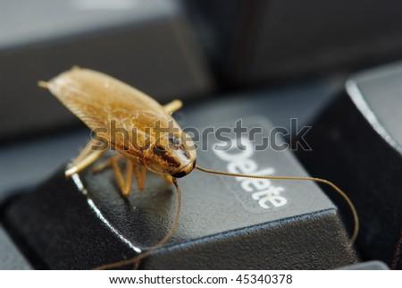 cockroach delete idea - stock photo