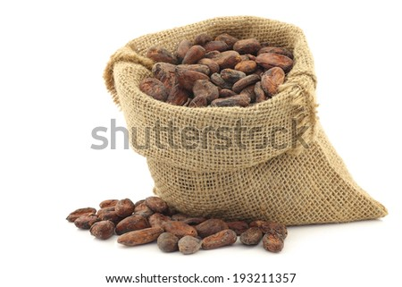 cocoa beans in a burlap bag on a white background - stock photo