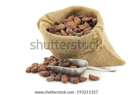 cocoa beans in a burlap bag with an aluminum spoon on a white background - stock photo