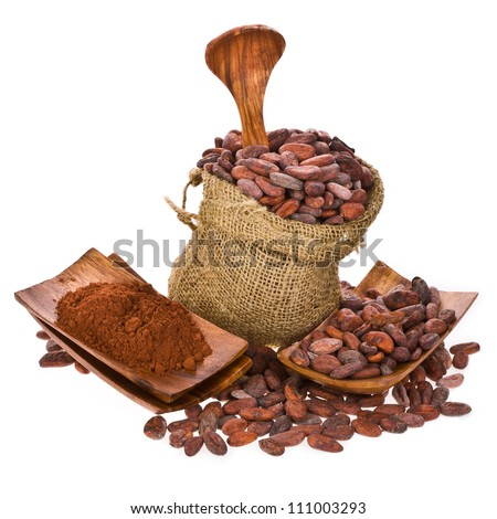 cocoa beans in bag of linen, cocoa powder on wooden stand with wooden spoon isolated on white background - stock photo