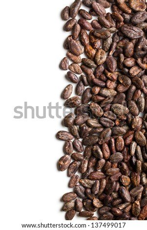 cocoa beans on white background - stock photo