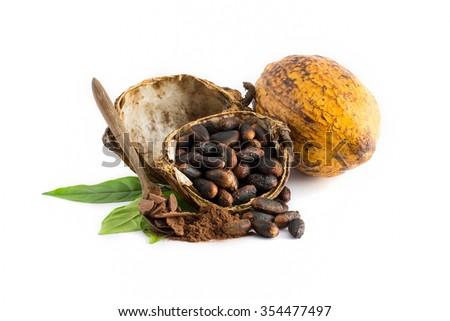 Cocoa pod, Cocoa beans, cocoa powder  on a white background. - stock photo