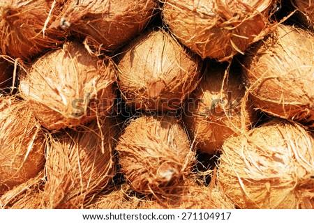 coconut background - stock photo