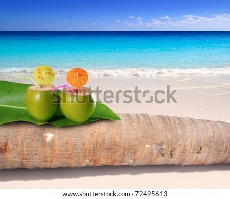 coconut cocktails on palm tree trunk in turquoise Caribbean beach [Photo Illustration] - stock photo