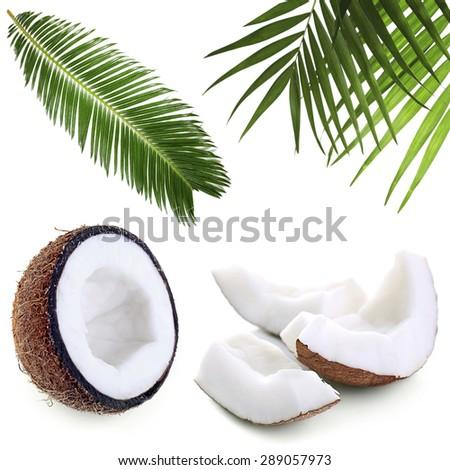 Coconut collage - stock photo