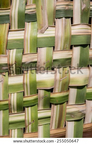coconut leaves weave pattern - stock photo
