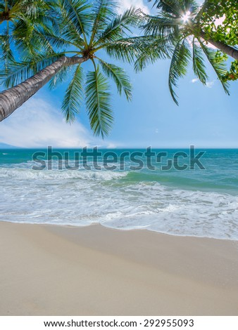 Coconut palm and tropical beach - stock photo