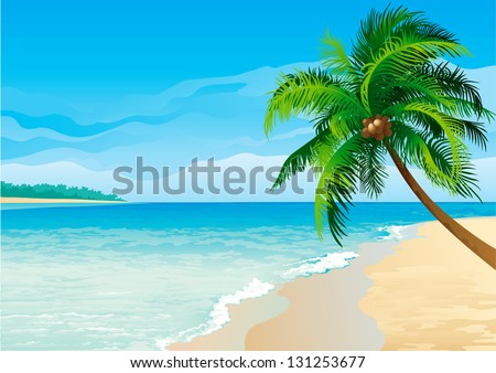 Coconut palm tree. Illustration  of coconut palm tree on tropical beach - Horizontal format. - stock photo