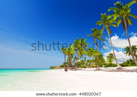 Coconut Palm trees on white sandy beach in Punta Cana, Dominican Republic - stock photo