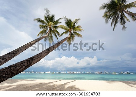 Coconut palms on tropical sandy beach - stock photo
