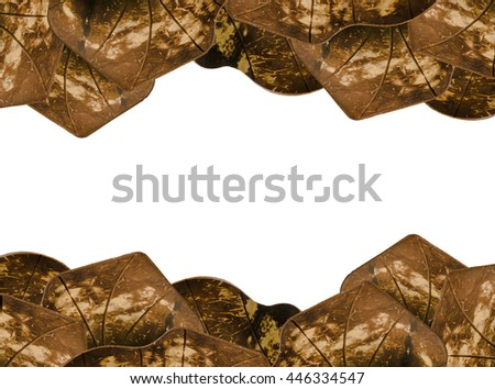 coconut shells shaped leaves isolated on white background. With copy space and with clipping path. - stock photo