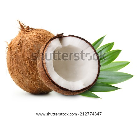 Coconut with palm leaves isolated on white. - stock photo