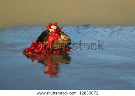 Coconut with red lei sit in the waters of beach on Kauai, Hawaii.  Image is duplicated and reflected in the wet sands as wave recedes. - stock photo