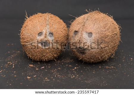 Coconuts cut in half and whole coconuts. human like face of coconut in black background. Coconut eyes nose and mouth. - stock photo