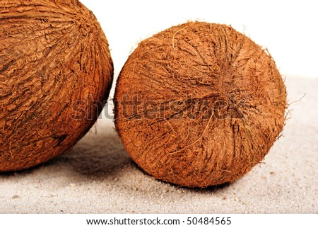 Coconuts on the sand background - stock photo