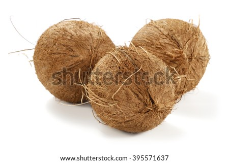 coconuts white space and brown colors  - stock photo