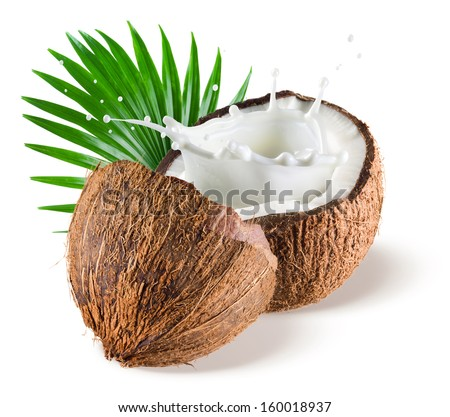 Coconuts with milk splash and leaf on white background - stock photo