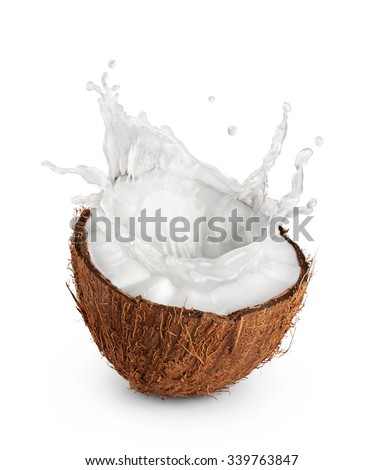 Coconuts with milk splash on white background.  - stock photo