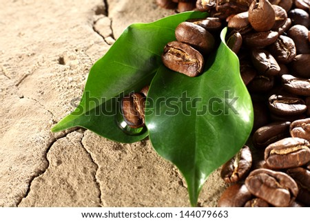 coffee and brown background - stock photo