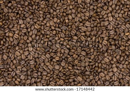 Coffee bean background texture - stock photo