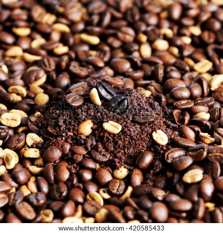 Coffee bean on macro ground coffee background. Arabic roasting coffee - ingredient of hot beverage. - stock photo