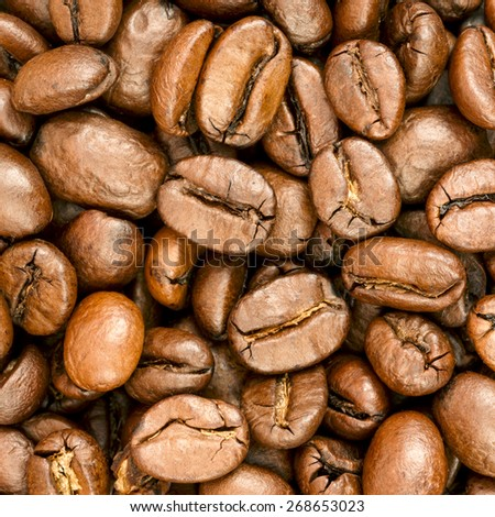Coffee Beans Close-Up./ Coffee Beans - stock photo