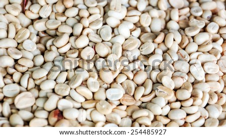 Coffee beans dried in the sun. - stock photo
