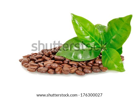coffee beans with a piece of coffee on white background - stock photo