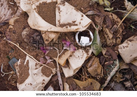 Coffee Filter, an Egg Shell and a Flower on domestic Compost - stock photo