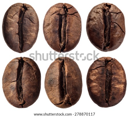 coffee grain isolated on white background - stock photo