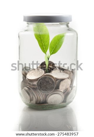 Coins and plant in glass on white background - stock photo