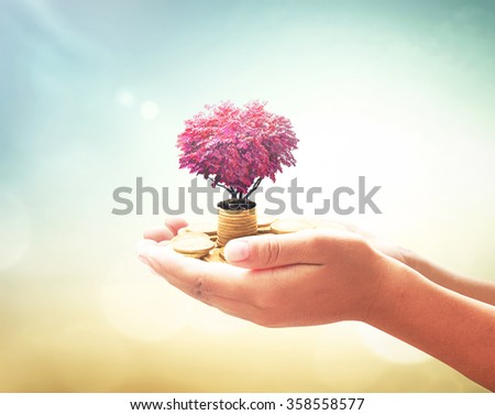 Coins in hands. Gold Investment Fund Financial Support CSR Dividend Market Growth Home House Stock Trust Wealthy Giving Planned Collection Debt Banking ROI Favour World Blood Donor Day Bonus concept. - stock photo