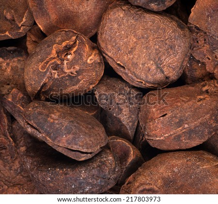 Cola nuts - stock photo