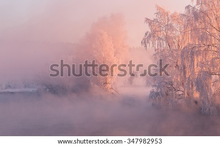 Cold and foggy winter morning . Colorful winter sunrise . Frozen trees illuminated by the sun . - stock photo