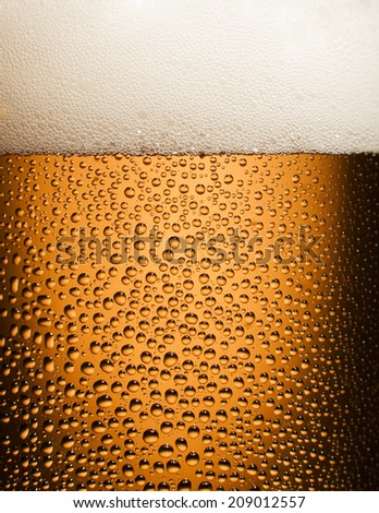 Cold beer in transparent glass - stock photo