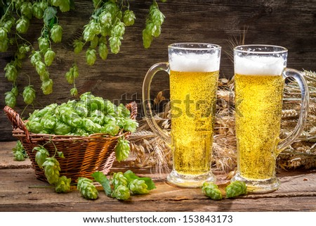 Cold beer surrounded by hops cones - stock photo
